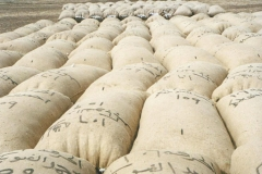 Cotton Bales in Sudan